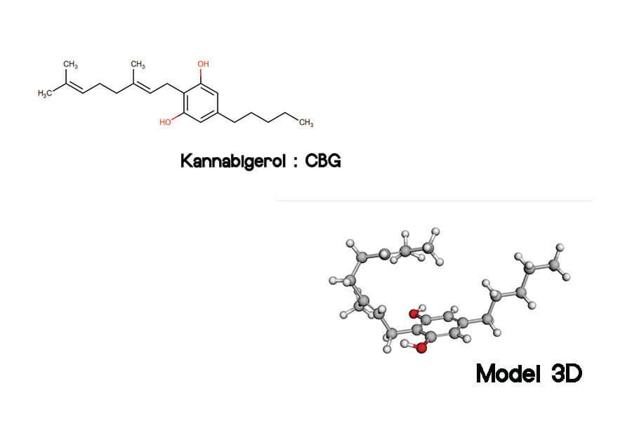 struktura chemiczna i model 3D kannabigerol CBG