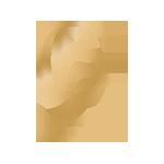 cbd doctor logo