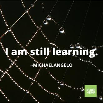 i am still learning - Michał Anioł