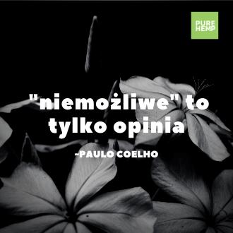 niemożliwe to tylko opinia - Paulo Coelho