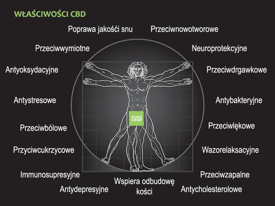 cbd właściwości - infografika od pure hemp - purehemp.pl